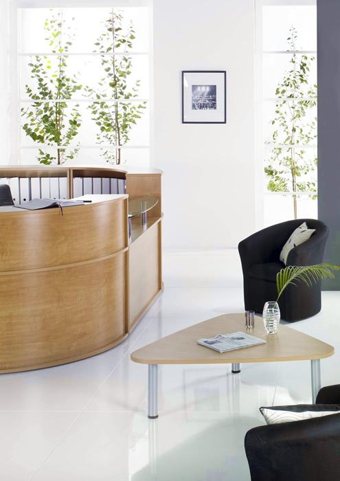 Decoraci n de empresas en madrid plantas y flores para for Decoracion de oficinas con plantas